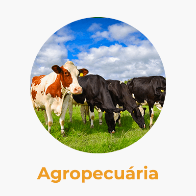 agropecuria-caninana-min